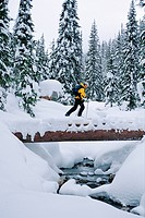 Ski touring, Connaught Creek, Roger´s Pass, British Columbia