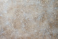 grunge colorfull exposed concrete wall texture