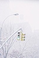 Snow Covered Traffic Light
