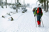People on winter hiking