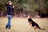 Master and her obedient German shepherd dog