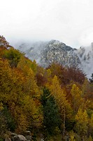 Autumn in the high mountains