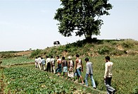 Rural men walking in field , Ngo Ramkrishna Sarada Math And Missan , Hazaribagh , Jharkhand , India