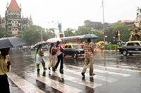 Heavy rain and people with umbrella and transport system in Fort , Bombay Mumbai , Maharashtra , India