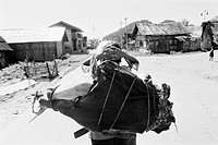 Man carrying loads ; Kameng ; Arunachal Pradesh ; India 1982