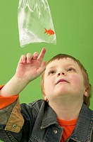 Boy Pointing at Pet Goldfish in Bag