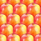 Seamless pattern of fresh red_yellow apples