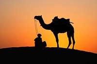 Man with camel sitting on sand dune after sunset , Khuri , Jaisalmer , Rajasthan , India
