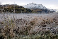YJ8-1904322 Mystic Autumn landscape Lake Sils Upper Engadin Switzerland