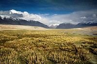 Marsh in the Pamir mountains, Xinjiang, China, Asia