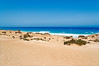 Beach in the Canary Island of Fuerteventura