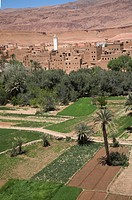 A Berber oasis town on the south eastern foothills of the Atlas Mountains on the fringe of the Sahara desert, Tinerhir, Morocco
