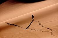 Trekking in Erg Ubari desert, Lybia.