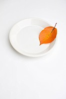 Fallen Leaves on Plate