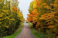 A narrow road through fall foliage color in the trees in northern Wisconsin, USA