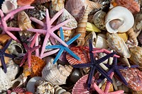 colourful shells and painted starfish arranged for sale to tourists in Rhodes old town Rodos
