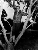 June Allyson, born Eleanor Geisman, is standing, up a tree and is wearing men's trousers and a checked shirt.