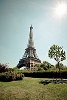 Eiffel Tower overlooking park