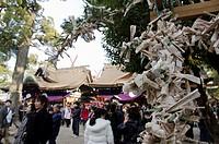 Besucher am Sumiyoshi_Taisya Schrein in Osaka, Japan am Neujahrstag um für Glück und Gesundheit im Neuen Jahr zu bitten / New years day Japanese going...