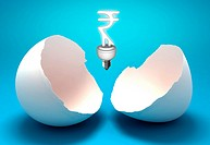 Rupee sign shaped light bulb representing concept of power saving
