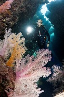 Cave Diving, Cave, Cavern diving, Cave Diver, Cavediving, Underwater Cave, Grotto, extreme sport, scuba, diver, diving, dive, sports, watersport, spor...