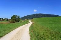 Bavarian hike path