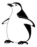Bird emperor penguin, silhouette