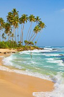 Sri Lanka - Landscape near Koggala beach, Indian Ocean coast, Asia