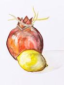 Pomegranate and lemon fruits