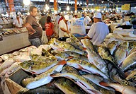 Brazil, Amazonas, Manaus, the fish Market