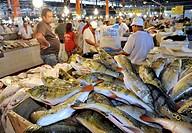 Brazil, Amazonas, Manaus, the fish Market