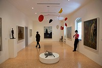 Italy, Veneto, Venice, Venier dei Leoni palace, the Guggenheim foundation
