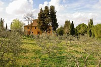 Countryhouse at Fiano