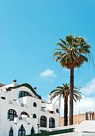 WR1044038 White house with palm trees on coast of Spain