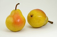 DEU, 2008: Common Pear, European Pear (Pyrus communis), variety: Williams Christ, two ripe fruit, studio picture.