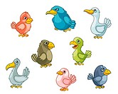 Funny cartoon birds set isolated on white. Vector