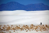 A visitor with a dog walking on white sand dunes in White Sands National Monument. Alamogordo. New Mexico. USA