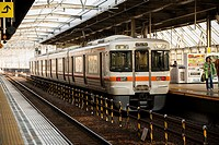 Train in Gifu station. Japan