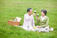 middle aged couple having wine while having a picnic