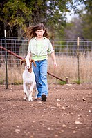 USA, Texas, Young girl walking with Boer market goat on farm