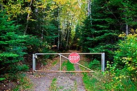 Stop sign on gate leading to woods