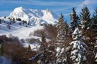 winter landscape, valley of Aspe, Pyrenees, France.