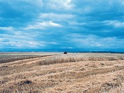 Threatening clouds on a cultivated field in the Tavoliere delle Puglie plain, Apulia region, Italy.