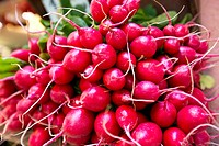 Radishes for sale at market stall, Venice, Veneto, Italy
