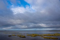 Schleswig-Holstein Wadden Sea National Park, UNESCO World Heritage Site, near Schobuell, Husum, North Sea, North Frisia, Schleswig-Holstein, Germany, ...