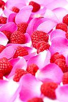 Fresh raspberries and pink rose petals