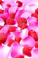 Fresh raspberries and pink rose petals