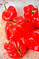 Habenero peppers