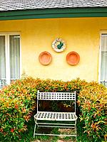 A metal bench in a garden on yellow wall background.