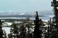 CANADA, 04.02.2004, Winter landscape south of Carcross, the border area between Canadian British Columbia and Yukon and Alaska in the US. - CARCROSS, ...
